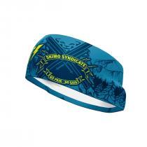 Dynafit Graphic Performance Headband - Reef