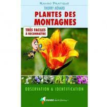 Plantes des montagnes très faciles à reconnaître