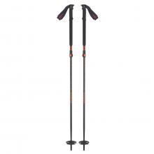 Scott Riot 18  2-Part Ski Poles